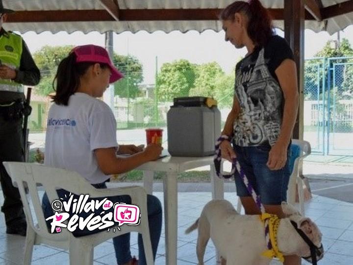 Los caninos de raza peligrosa deben ser registrados en la Secretaria de Salud Municipal